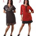 Verily Winter 2012 tunics