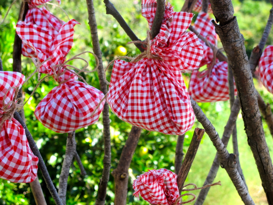 Barnyard theme party gingham gift bags on sticks