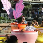 Disneyland tips and tricks