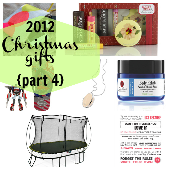 2012 Christmas gift guide