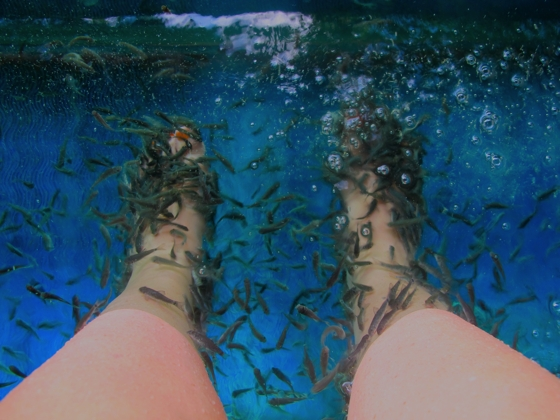 Water Bom Park, Bali | fish spa