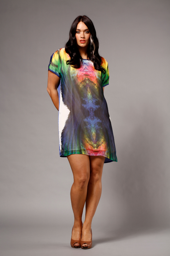 Embody Denim Tinseltown digiprint dress
