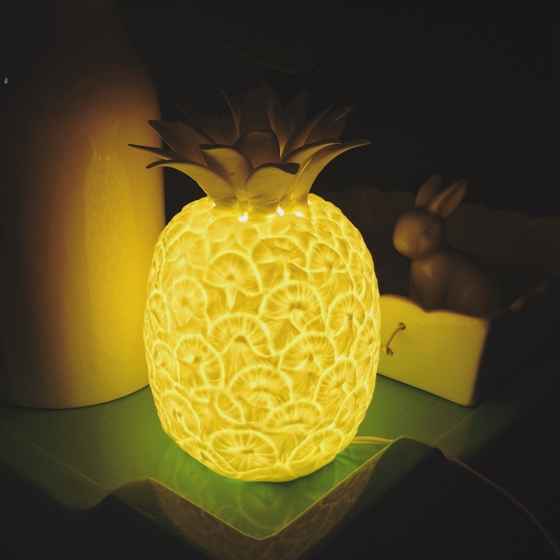 Pineapple lamp | willow & bird