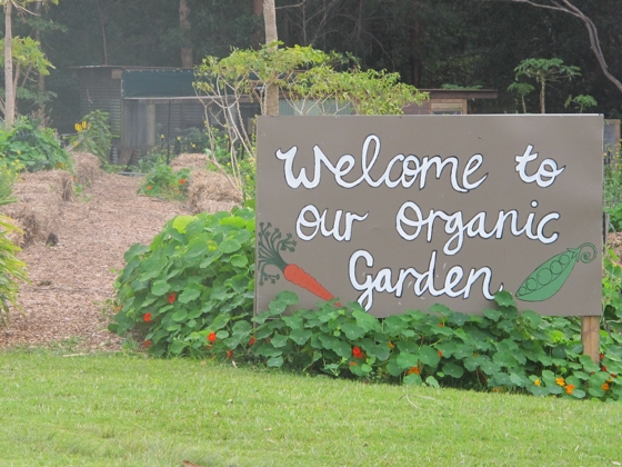 Gwinganna - organic garden