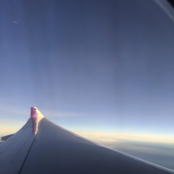 Hawaiian Airlines | 17 tips for travelling to Hawaii if you're a newbie