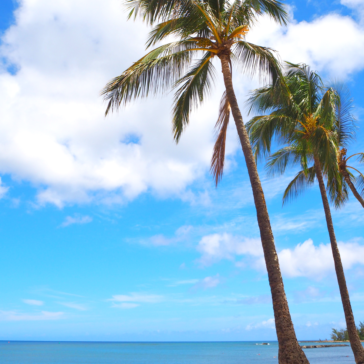 Hawaii North Shore | Confessions of a Reformed Over-Packer by Nikki Parkinson | Styling You