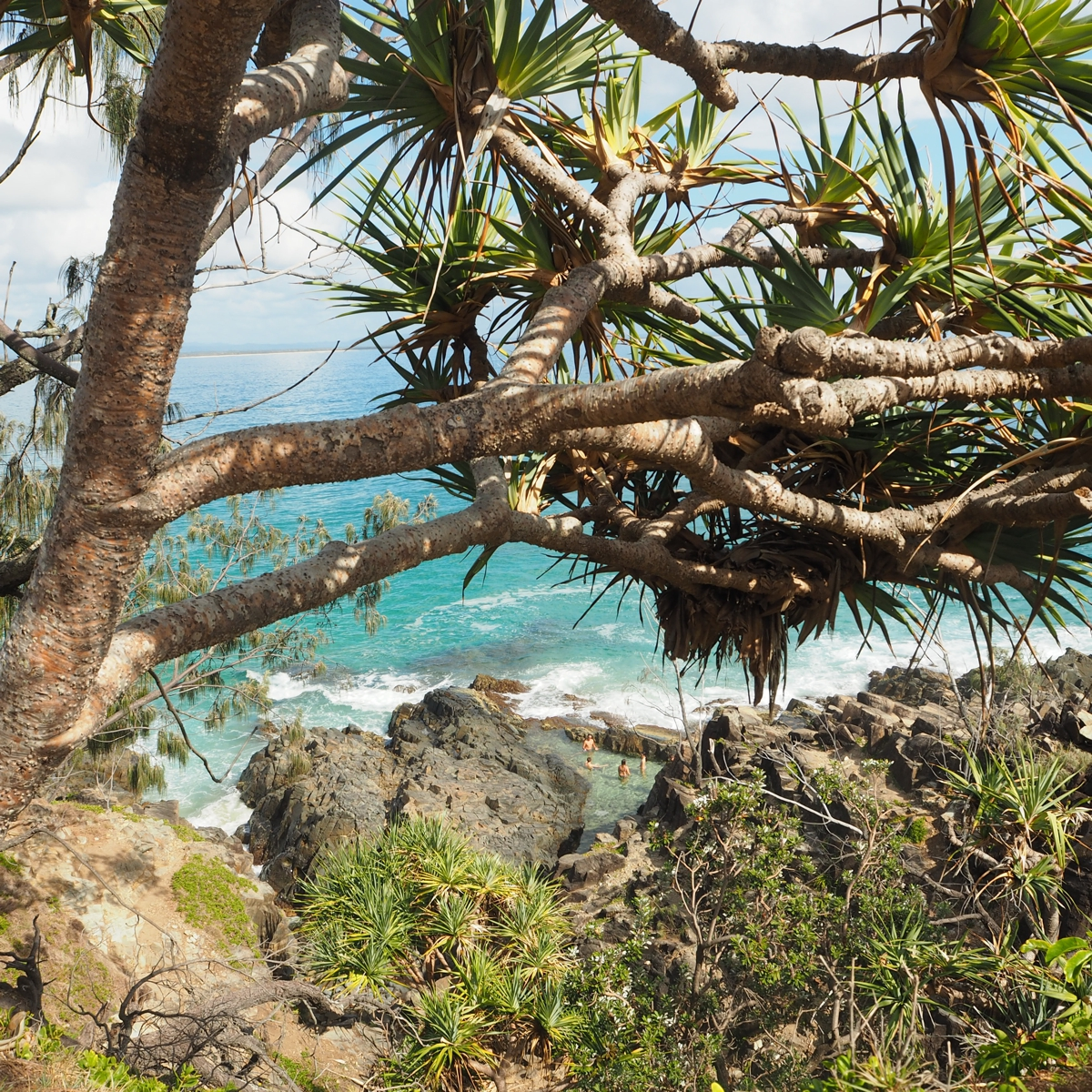 National Park | 7 things not to miss when visiting Noosa
